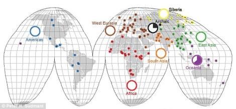 Yukarıda gösterilen harita bilim adamlarının dünya çevresindeki 125 popülasyonu inceleyerek hazırladıkları, şimdiye kadar oluşturulmuş en detaylı insan genetik çeşitliliği haritasıdır. Yüzdelik dilimlerle gösterilen Güney Pasifik yerli insanlarında, nesli tükenen Denisovanlarla ortak olduğu saptanan DNA kısımları bulunmuştur.