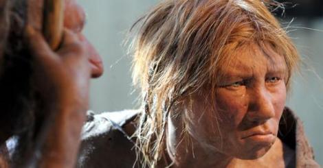 storymaker-humans-vs-neanderthals6-514x268