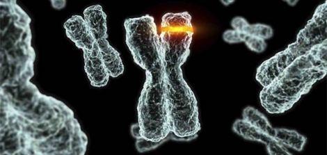 kinect-mutation-station