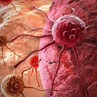 Kanserin Evrimi